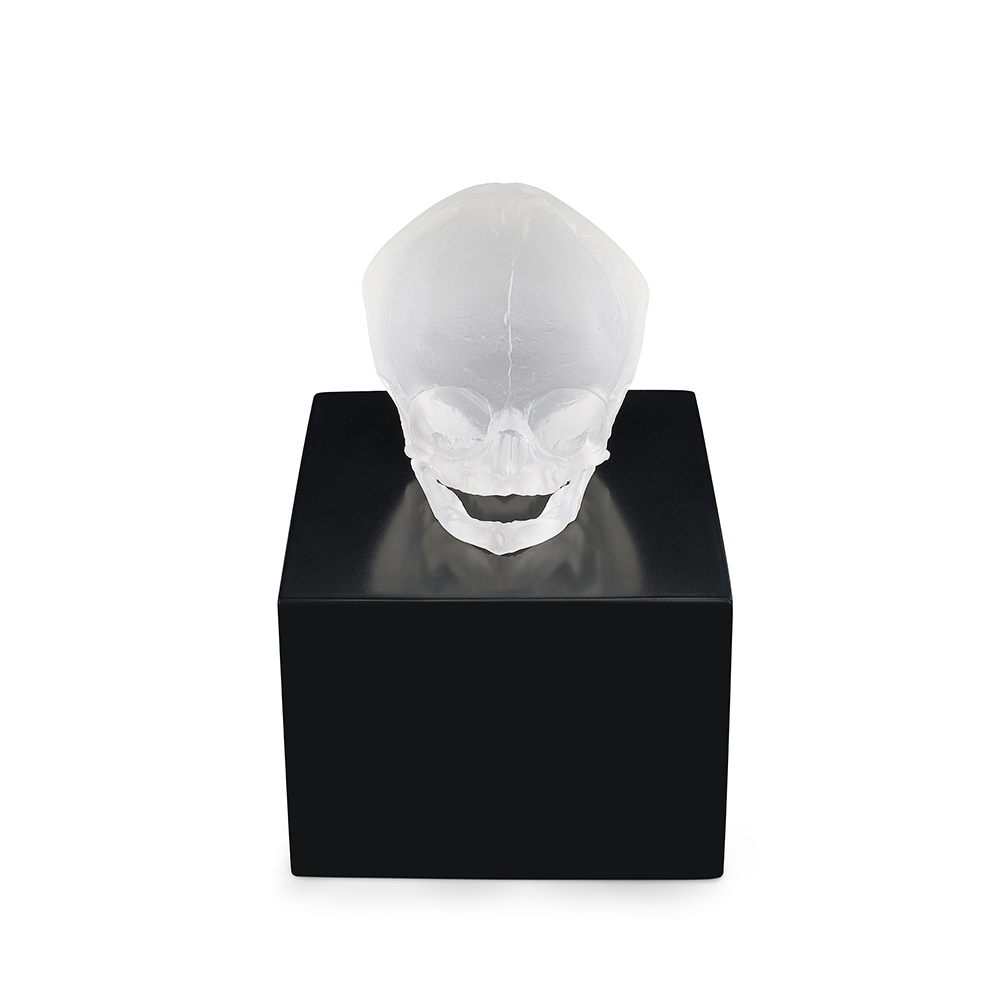 Eternal Memory, crystal sculpture | Limited edition (35 pieces), satin clear crystal| Eternal, Damien Hirst and Lalique