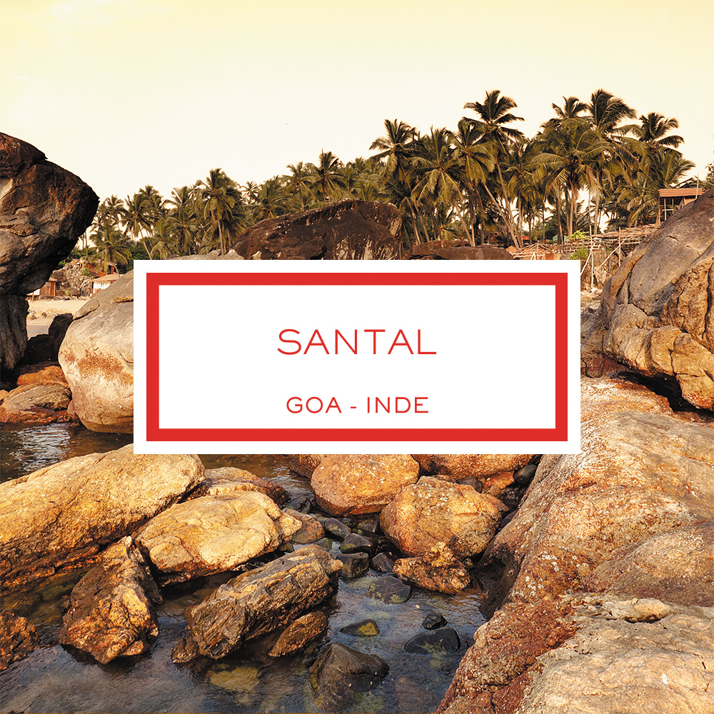 Sandalwood, Goa - India, Scented Candle