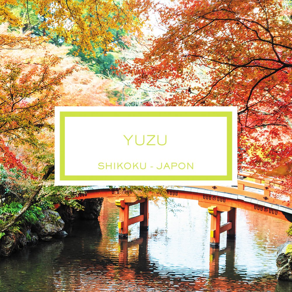 Yuzu, Shikoku - Japon, Bougie Parfumée