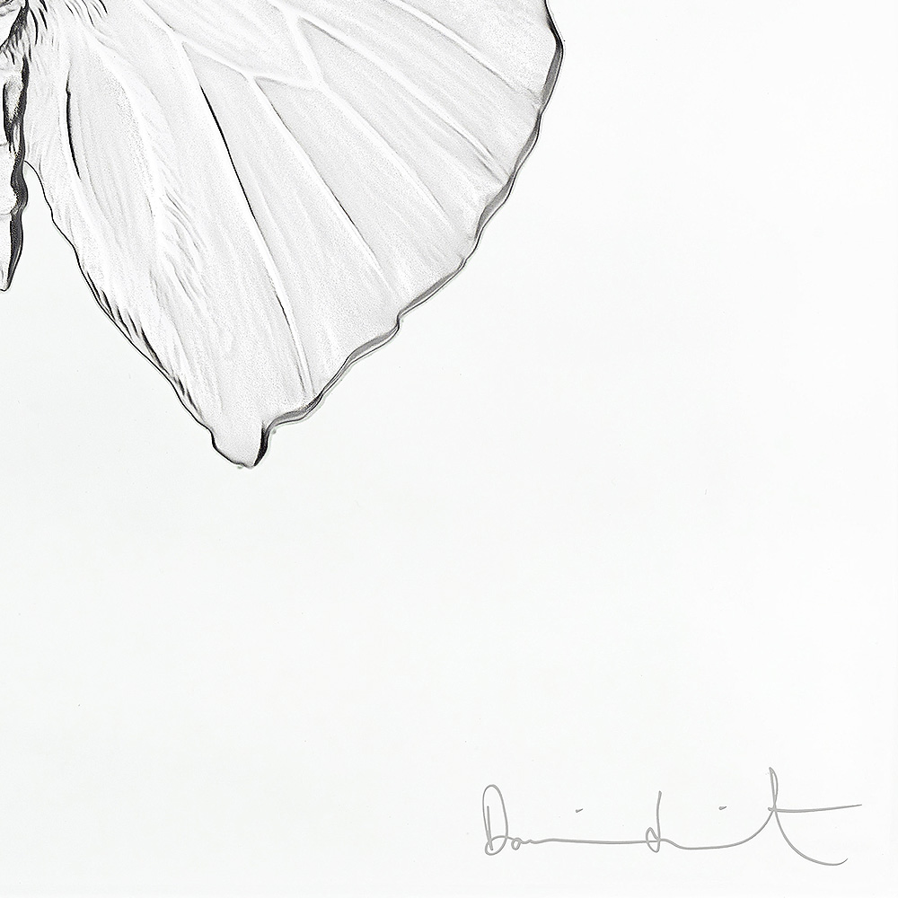 Eternal Love, crystal panel   Limited edition (50 pieces), clear crystal   Eternal, Damien Hirst and Lalique