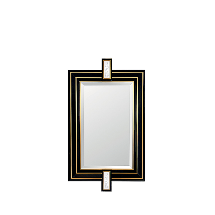 Tianlong mirror